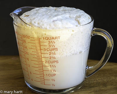 photo of yeast rising in measuring cup