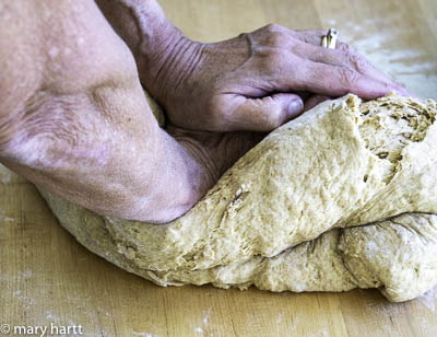photo of oatmeal molasses bread being kneaded